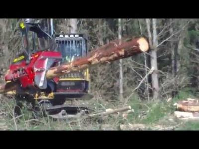 Dev Ağaç Kesme Makinesi